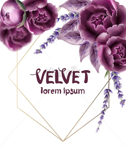 Rose flowers wedding card vector watercolor. Isolated background. Provence flowers banner - Starpik Stock