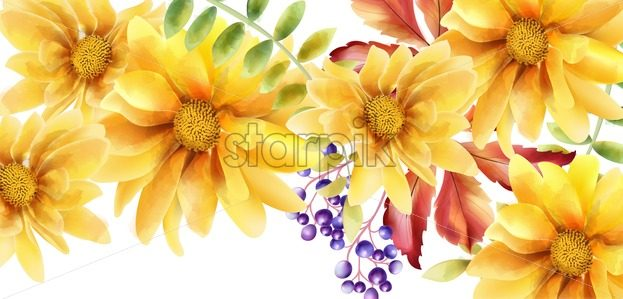 Watercolor orange sunflower with leaves and berries. Vector greeting card composition - Starpik Stock