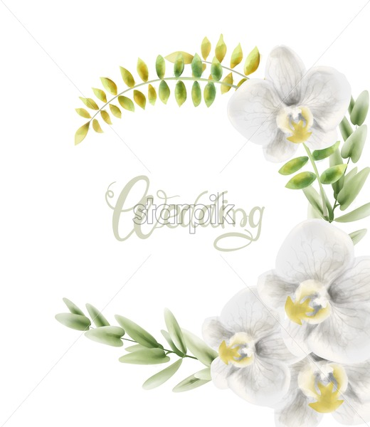 Watercolor white orchid flowers wreath bouquet background vector. Wedding gretting card - Starpik Stock
