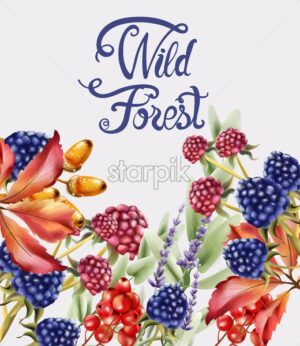 Wild forest flowers and fruits bouquet card vector watercolor. Isolated background. Provence flowers banner - Starpik Stock