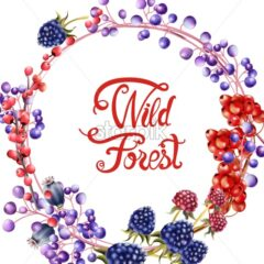 Wild forest flowers and fruits wreath bouquet card vector watercolor. Isolated background. Provence flowers banner - Starpik Stock