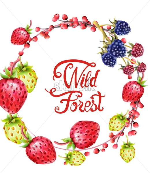 Wild forest fruits on wreath vector. Strawberries and berries - Starpik Stock