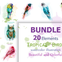 Vector Bundle 20 Tropic birds watercolor set collection. Exotic detailed colorful birds