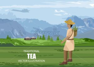 Asian man walking in a tea field with basket. Houses and mountains on background. Cloudy sky. Vector - Starpik Stock
