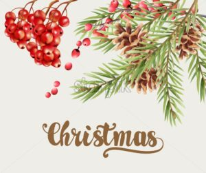 Christmas greeting card with red berries, conifer cone and fir leaves. Place for text. Vector - Starpik Stock