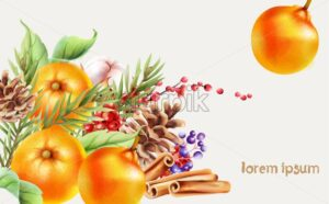 Christmas greeting card with red berries, conifer cone, orange, flowers and fir leaves. Place for text. Vector - Starpik Stock