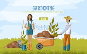 Couple doing gardening work. Carrying wheelbarrow with soil and planting flowers. Blue sky - Starpik Stock