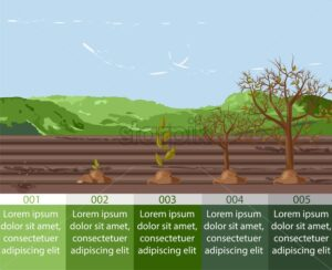 Five growth stages of a seed to tree form. Place for text. Mountains and blue sky on background. Agriculture idea vector - Starpik Stock