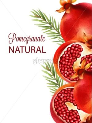 Natural red half sliced pomegranate with fir leaves and flowers on background - Starpik Stock