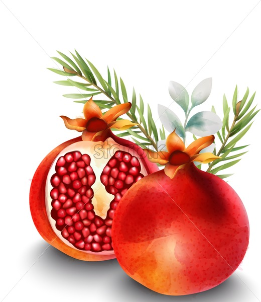 Natural red half sliced pomegranate with fir leaves on background - Starpik Stock