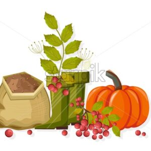 Set of autumn vegetables and gardening tools. Pumpkin, red berries, soil, green rubber boots for gardening. Agricultural vector