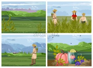 Set of organic tea harvesting process with asian people. Green fields, mountains, healthy beverage with pumpkins, lime and berries. Vector - Starpik Stock