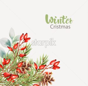Winter christmas greeting card with flowers, fir tree leaves, pine cone and red berries. Place for text. Vector - Starpik Stock