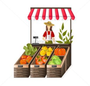 Woman selling vegetables outdoors. Tomatoes, colorful peppers, green lettuce and pumpkins. Agriculture marketplace idea vector - Starpik Stock