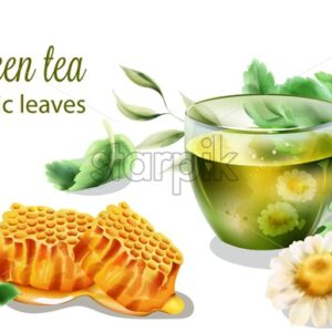 Organic green tea in transparent cup with mint leaves. Chamomiles and honeycomb composition. Watercolor vector