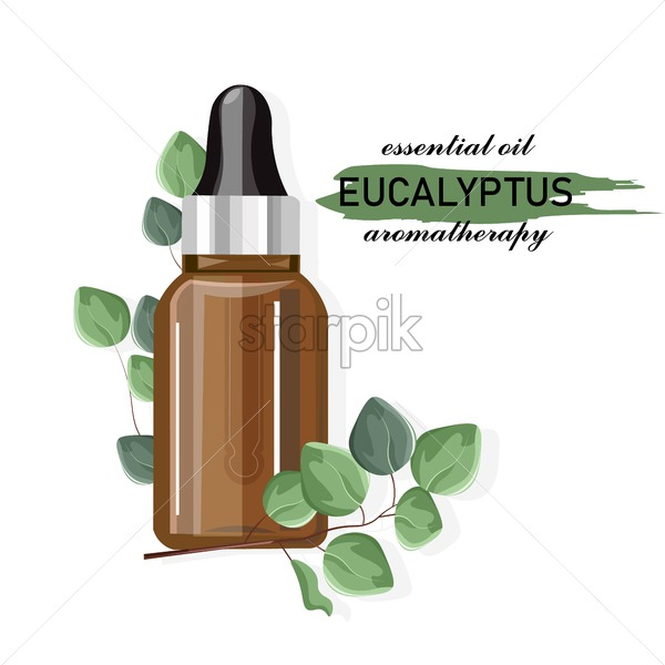 Eucalyptus essential oil bottle with dropper. Green leaves decorations. Healthcare Vector - Starpik Stock