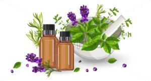 Eucalyptus essential oil bottle with dropper. Green mint leaves in spice mill and lavender flower decorations. Healthcare Vector - Starpik Stock
