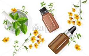 Eucalyptus essential oil bottle with dropper. Green mint leaves in white ceramic mill and black eyed susan flower decorations. Healthcare Vector - Starpik Stock