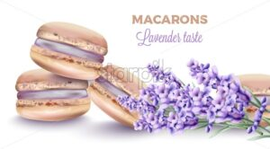 French macaroon sweets with lavender taste and color. Flower decorations. Watercolor vector - Starpik Stock