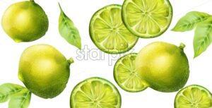 Green lime fruits with slices and leaves. Banner with isolated background - Starpik Stock