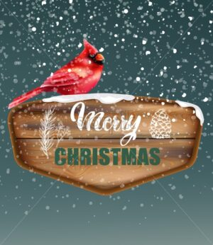 Merry Christmas written on wooden piece. Red tropical bird sitting on sign. Snow falling. Winter vector - Starpik Stock