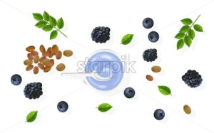 Organic blueberries treatment products with cream. Fruit slices, nuts and green mint leaves. White background. Natural herbal cosmetic Vector - Starpik Stock
