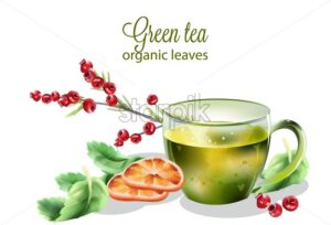 Organic green tea made from leaves. Cranberry, mint leaves and orange slices. Cozy morning vector - Starpik Stock