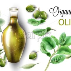 Organic olive oil in abstract shape glass. Composition with green mint leaves. Watercolor vector - Starpik Stock