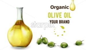 Organic olive oil in bottle. Place for text or brand. Watercolor style vector - Starpik Stock