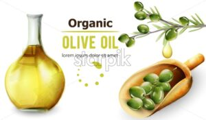 Organic olive oil in bottle. Wooden shovel. Place for text or brand. Watercolor style vector - Starpik Stock