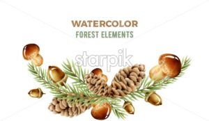 Watercolor forest elements with mushrooms, pine cone and leaves. Wide banner. Winter holidays vector - Starpik Stock