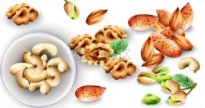 Watercolor set of organic nuts. Pistachio, cashew, walnut and almonds. Mint leaves decorations. Vector - Starpik Stock