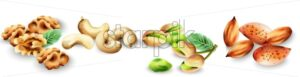 Watercolor set of organic nuts. Pistachio, cashew, walnut and almonds. Vector - Starpik Stock