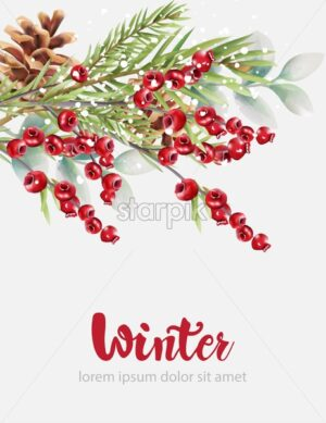 Winter cranberries with green fir tree leaves and pine cone. Christmas holidays vector - Starpik Stock