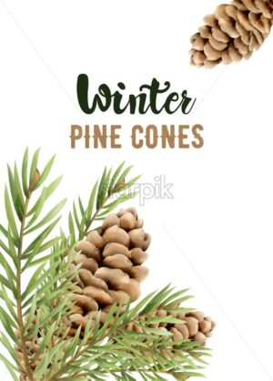 Winter pine cones on leaves. Watercolor seasonal vector - Starpik Stock