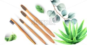 Bamboo toothbrushes with aloe vera plants and green leaves. Ecology products vector - Starpik Stock