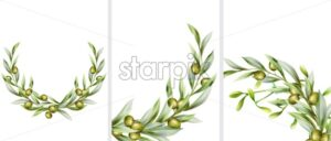 Big set of green olive wreath in random angles. Vector - Starpik Stock