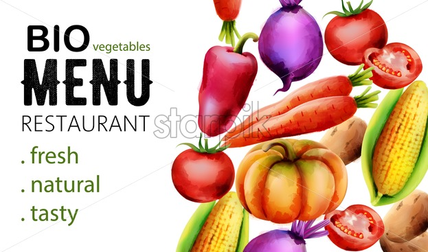Fresh vegetables including onion, pepper, carrot, corn, tomatoes and beets. Menu template vector. White background - Starpik Stock