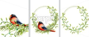 Spring wreath with black and red bird sitting on green fir leaves wreath. Vector - Starpik Stock