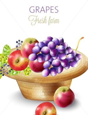 Fresh farm products composition with grapes, apples, artichokes and berries in a hat. Vector - Starpik Stock