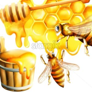 Honey watercolor set with honeycomb and big bee flying and filling the bucket. Place for text. Vector - Starpik Stock