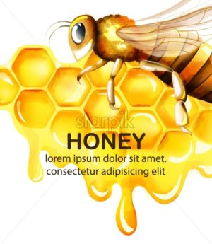 Honey watercolor set with honeycomb and big bee flying. Place for text. Vector - Starpik Stock