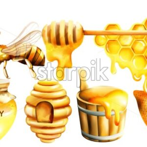 Honey watercolor set with jar, dipper, bees, honeycomb, house and bucket. Vector - Starpik Stock