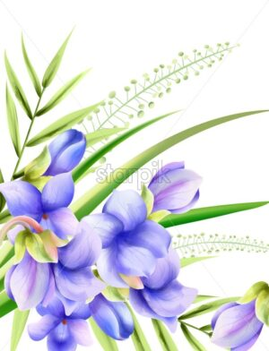 Morning glory watercolor spring flowers with green leaves. Vector - Starpik Stock