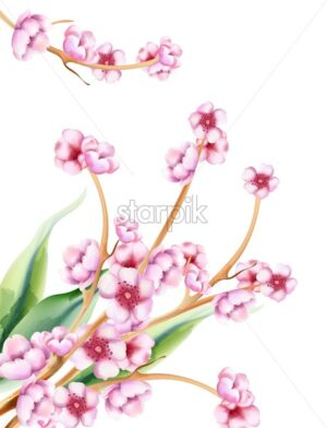 Pink spring watercolor blossom flowers with green leaves. Vector - Starpik Stock