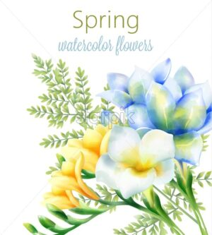 Spring watercolor orchid blue, yellow and white flowers with green leaves. Vector - Starpik Stock