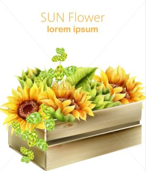 Sunflower and green artichoke in wooden box. Watercolor spring vector - Starpik Stock