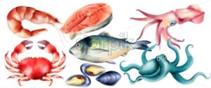 Watercolor fresh fish and mollusc from the sea. Shrimp, steak, crab, oysters, octopus. Vector set - Starpik Stock