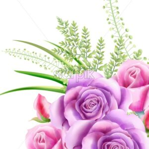Watercolor pink rose flowers with green leaves on background. Spring vector - Starpik Stock