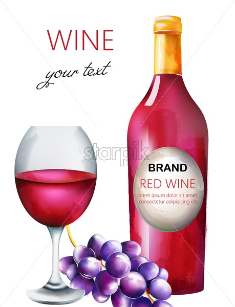 Watercolor red wine composition with bottle, grapes and filled glass. Place for text and brand. Vector - Starpik Stock